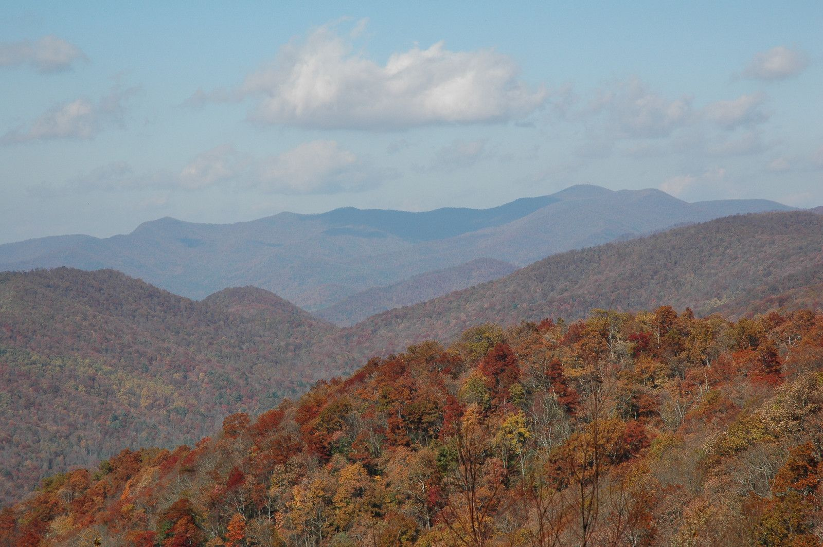 fall foliage in smithgall state park