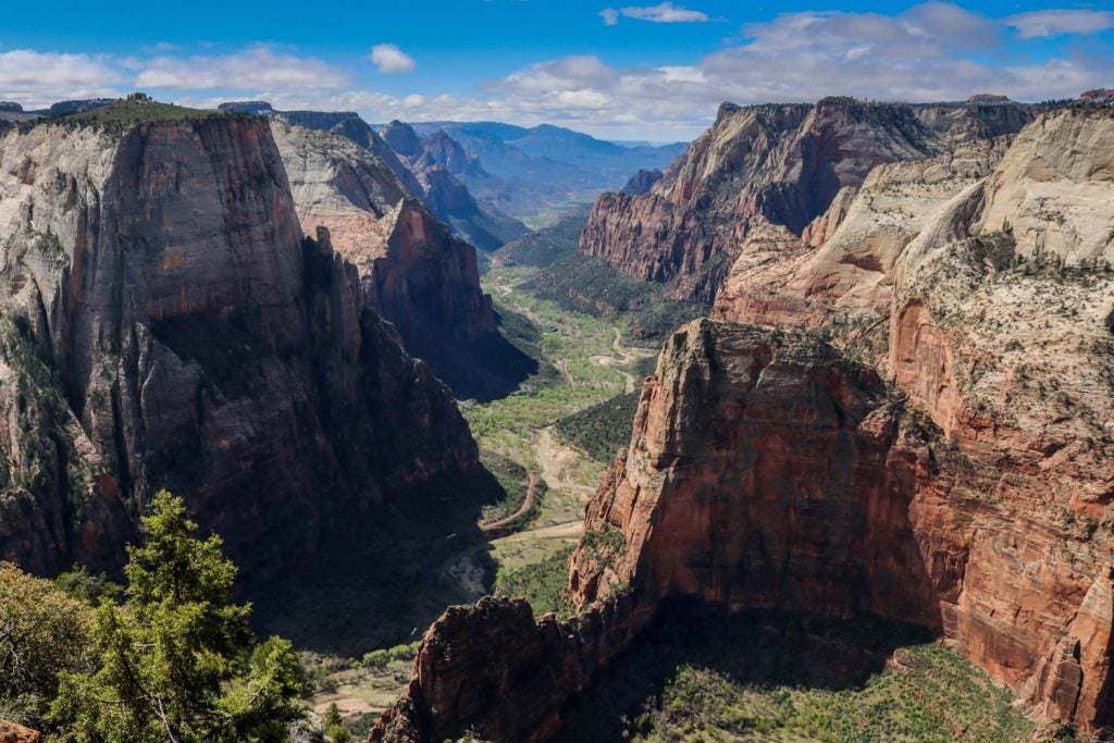 an overlook of observation point seen from Zion National Park