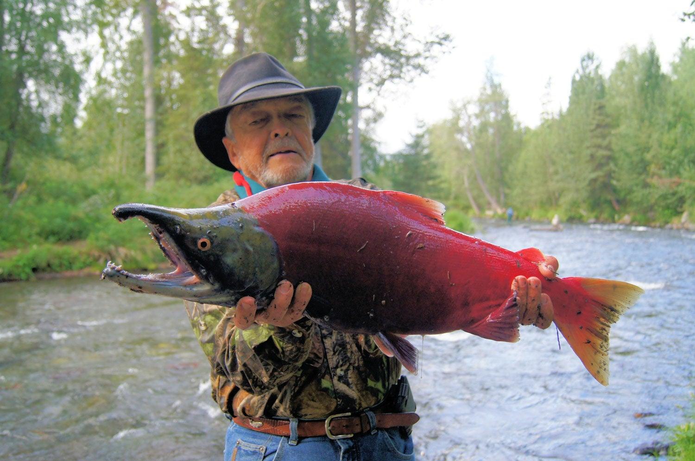 Sockeye salmon fishing near the Russian River Campground
