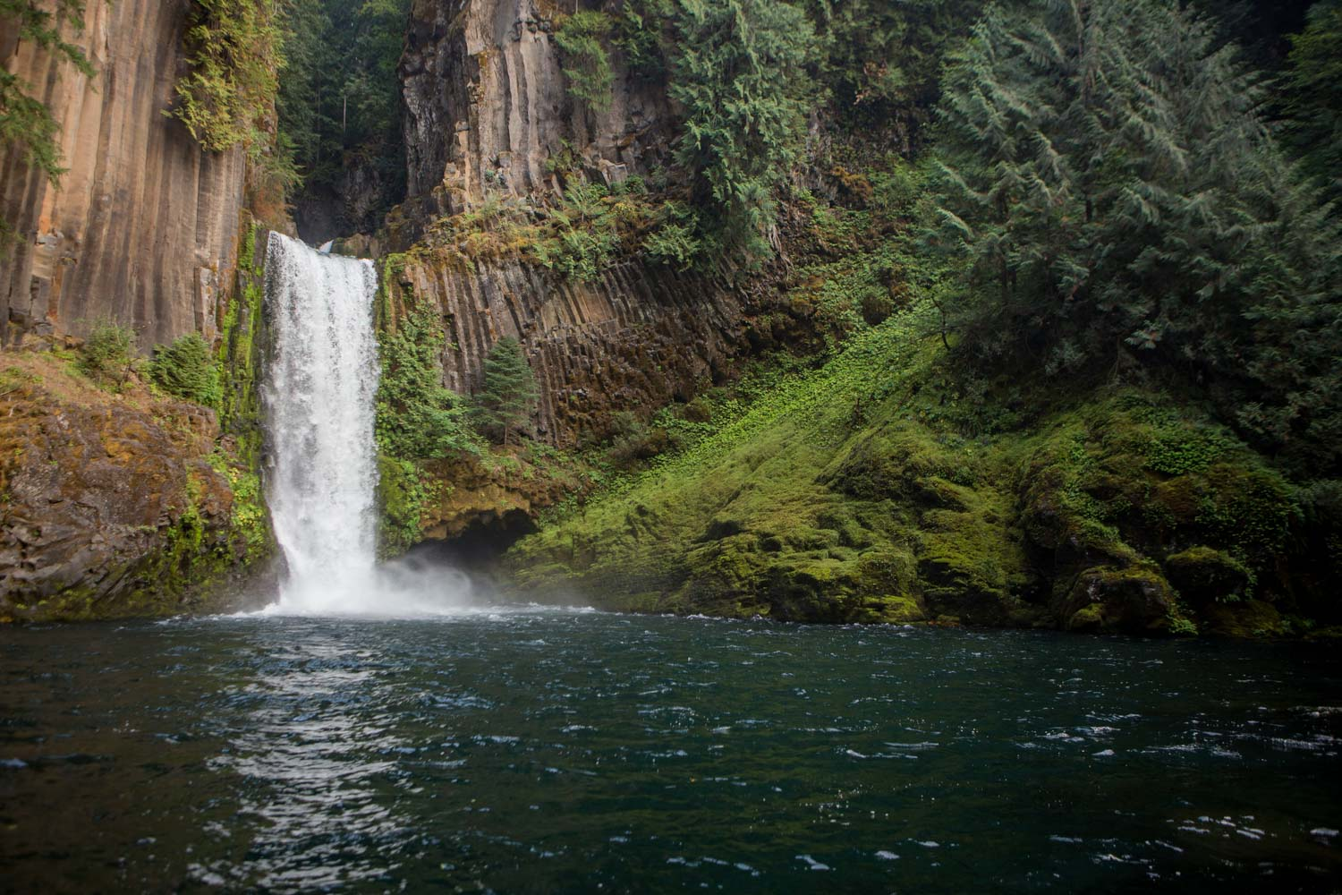 an oregon waterfall drops into a still pool from a steep rock face in a forest