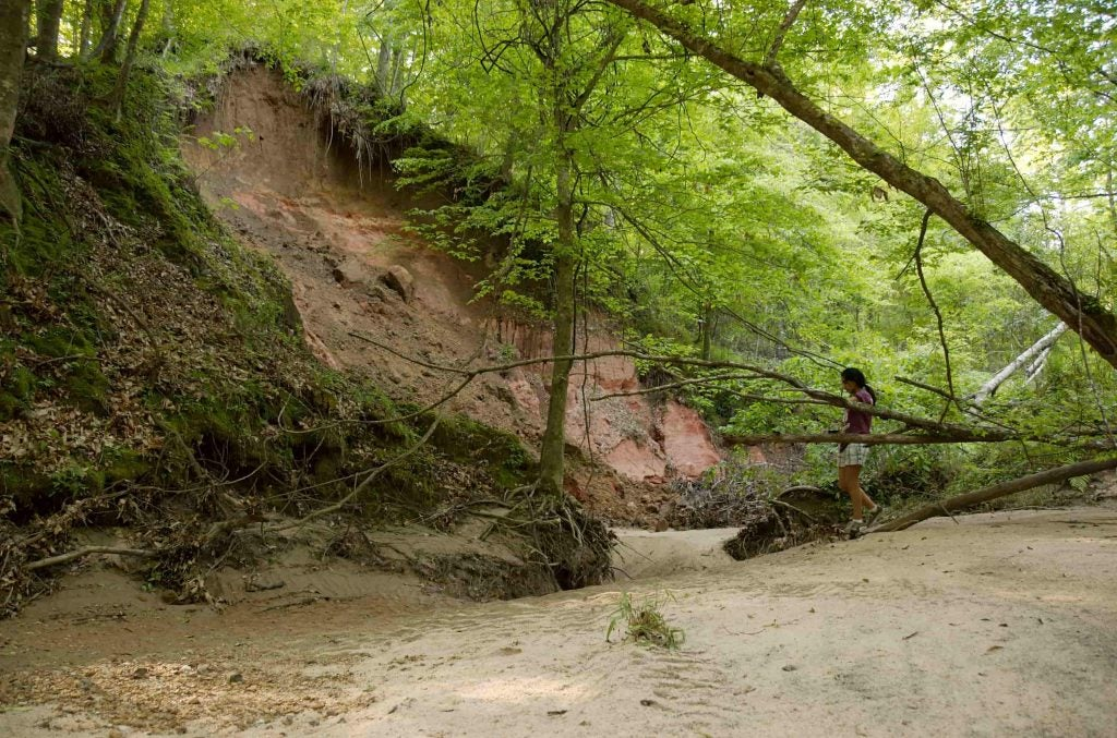 A woman hikes along a sandy creekbed in Tunica Hills Wildlife Management Area
