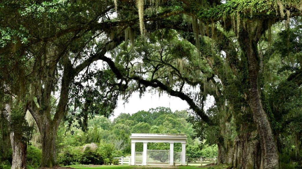 A plantation yard in St. Francisville, Louisiana. Often the host of the Walker Percy Weekend