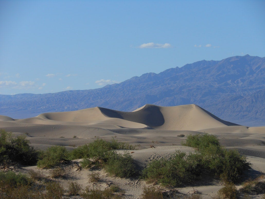 a sand dune in the california desert