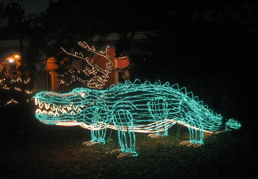 dinosaur illuminated with christmas lights at celebration in the oaks