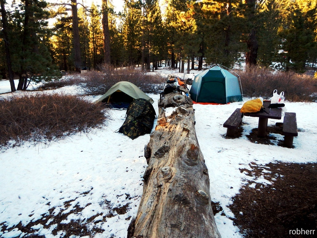 tents set up in snowy campground making the perfect base camp for dog sledding