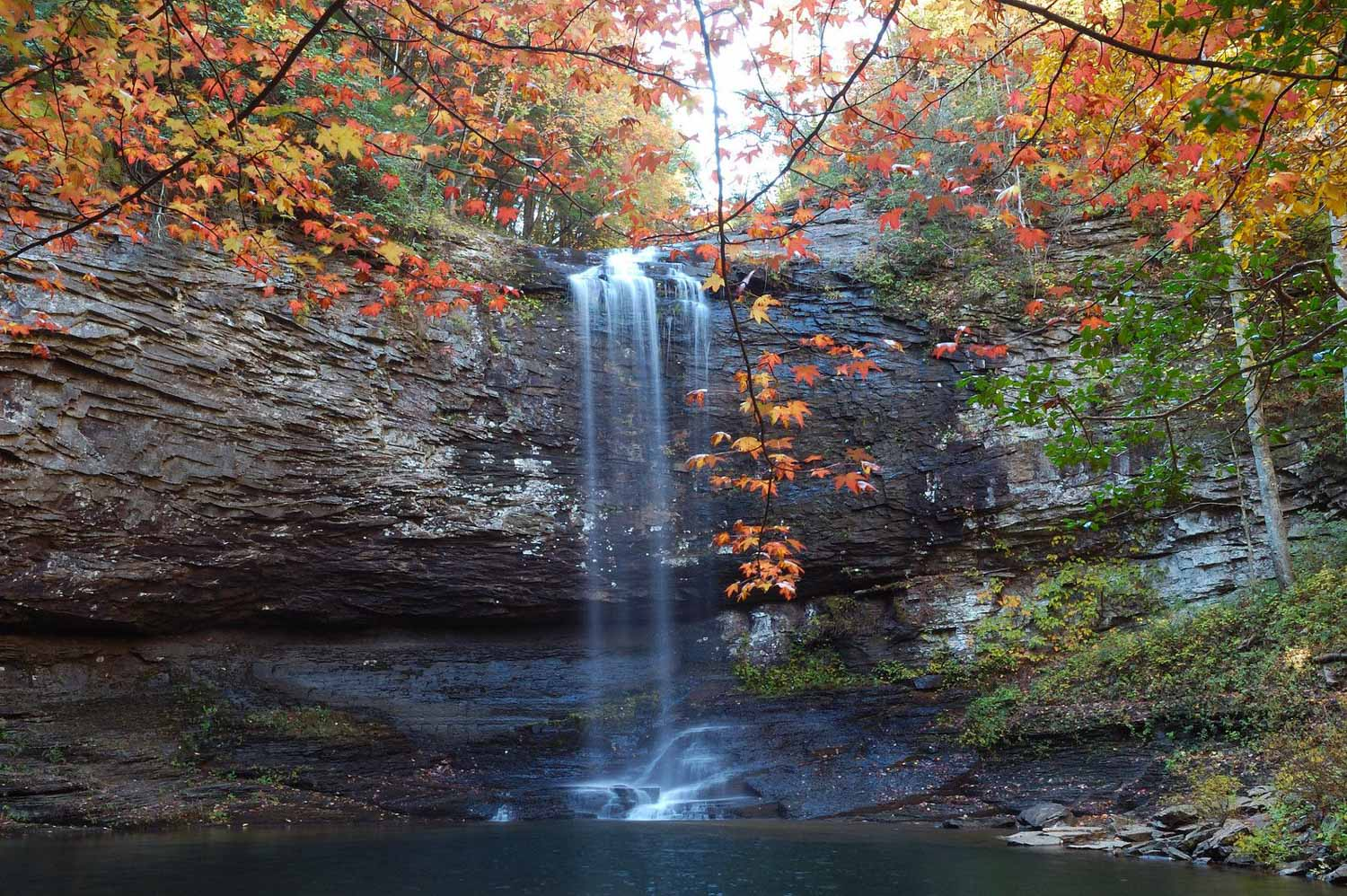 cloudland canyon waterfall with fall leaves