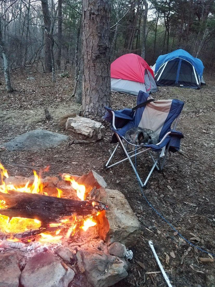 The Dyrt camper Anna W.'s primitive campsite at DeSoto Falls.