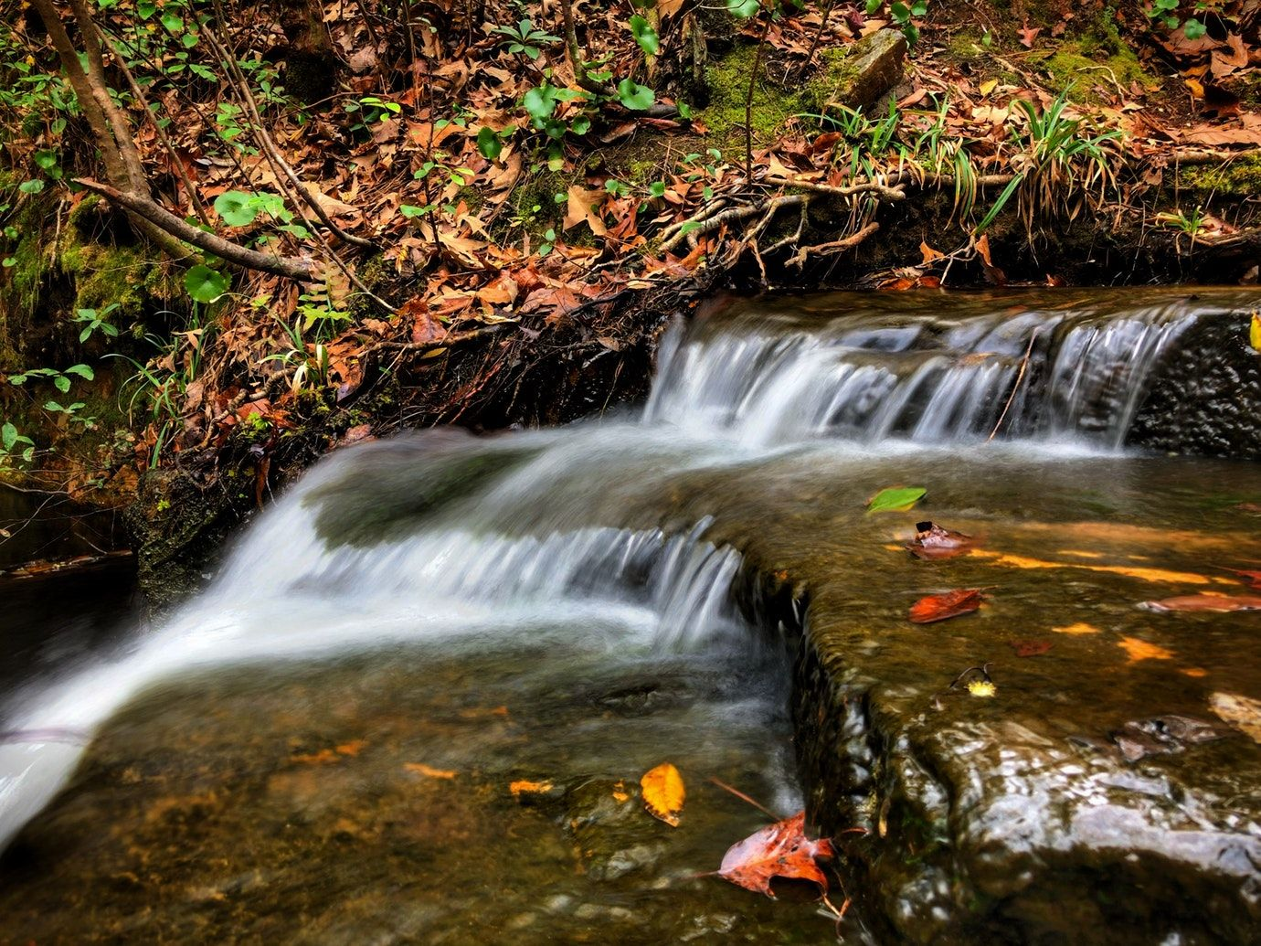 FDR state park waterfall with fall leaves