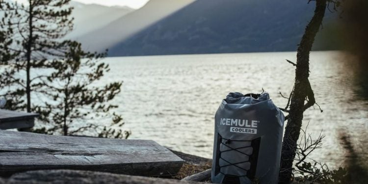 icemule cooler carrying camping drinks by the lake