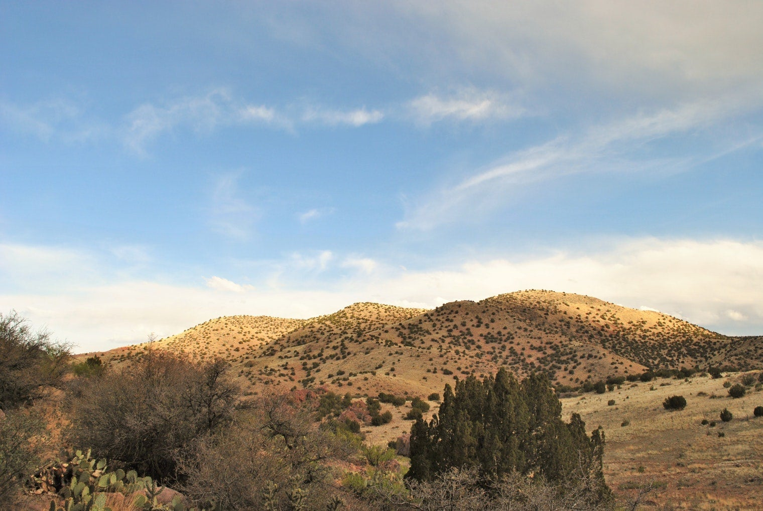 panoramic view of desert landscape at water canyon in new mexico