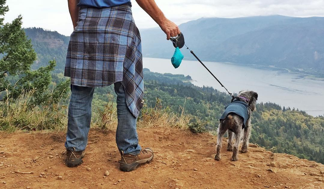 pocopet dog carrier sling in a blue pouch on a leash