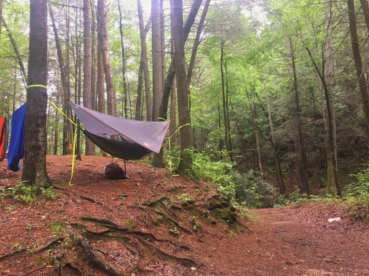 hammock tent hung at a primitive campsite in Raven Cliff Falls