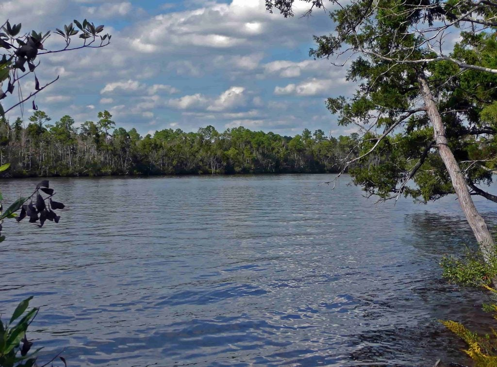 blackwater river campgrounds in florida