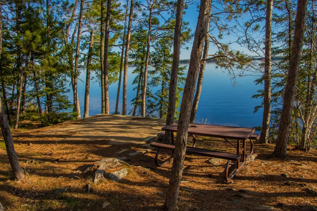 National Parks in Minnesota with forested area and picnic table by the water.