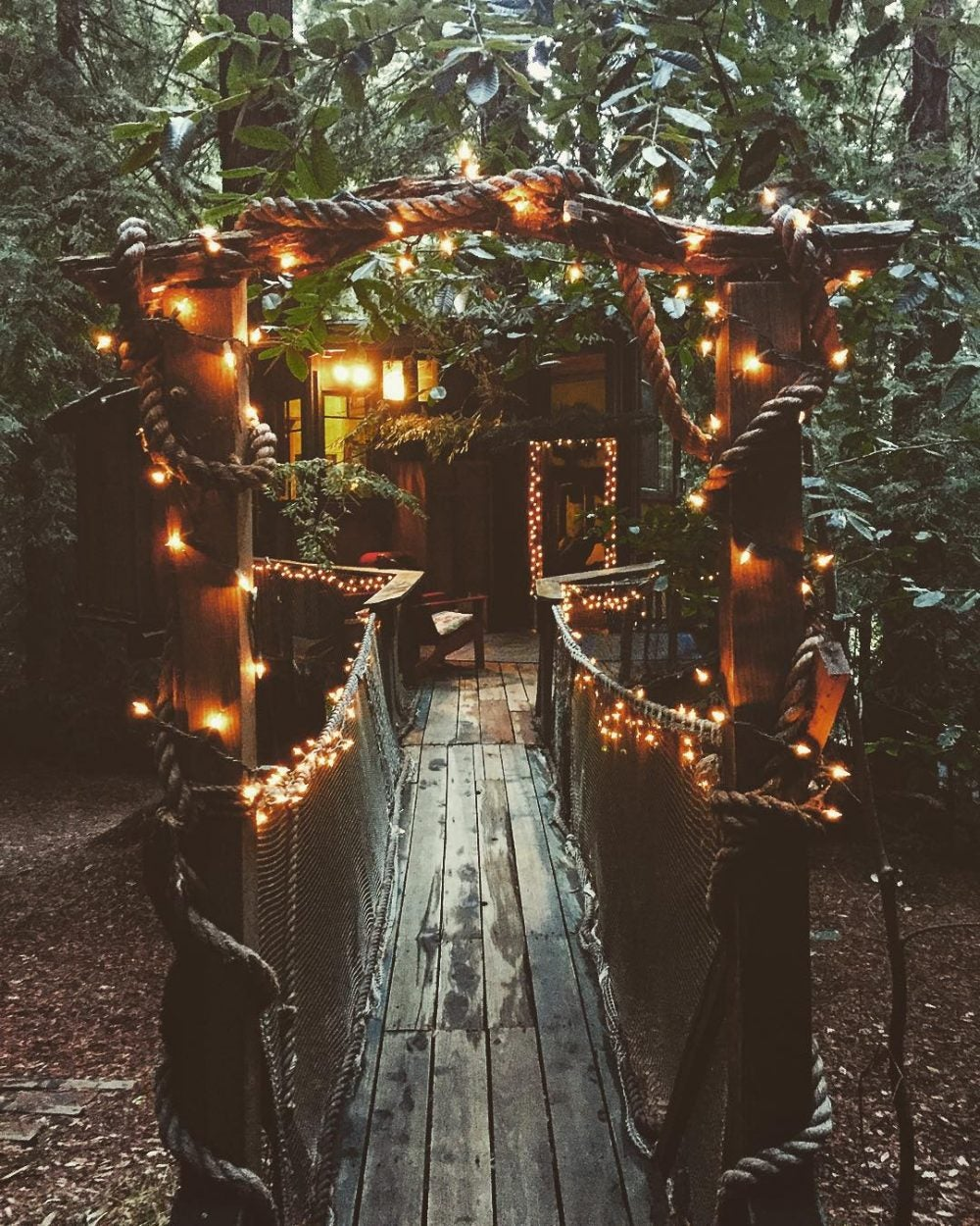 lights strung through trees and over a bridge leading to treehouse