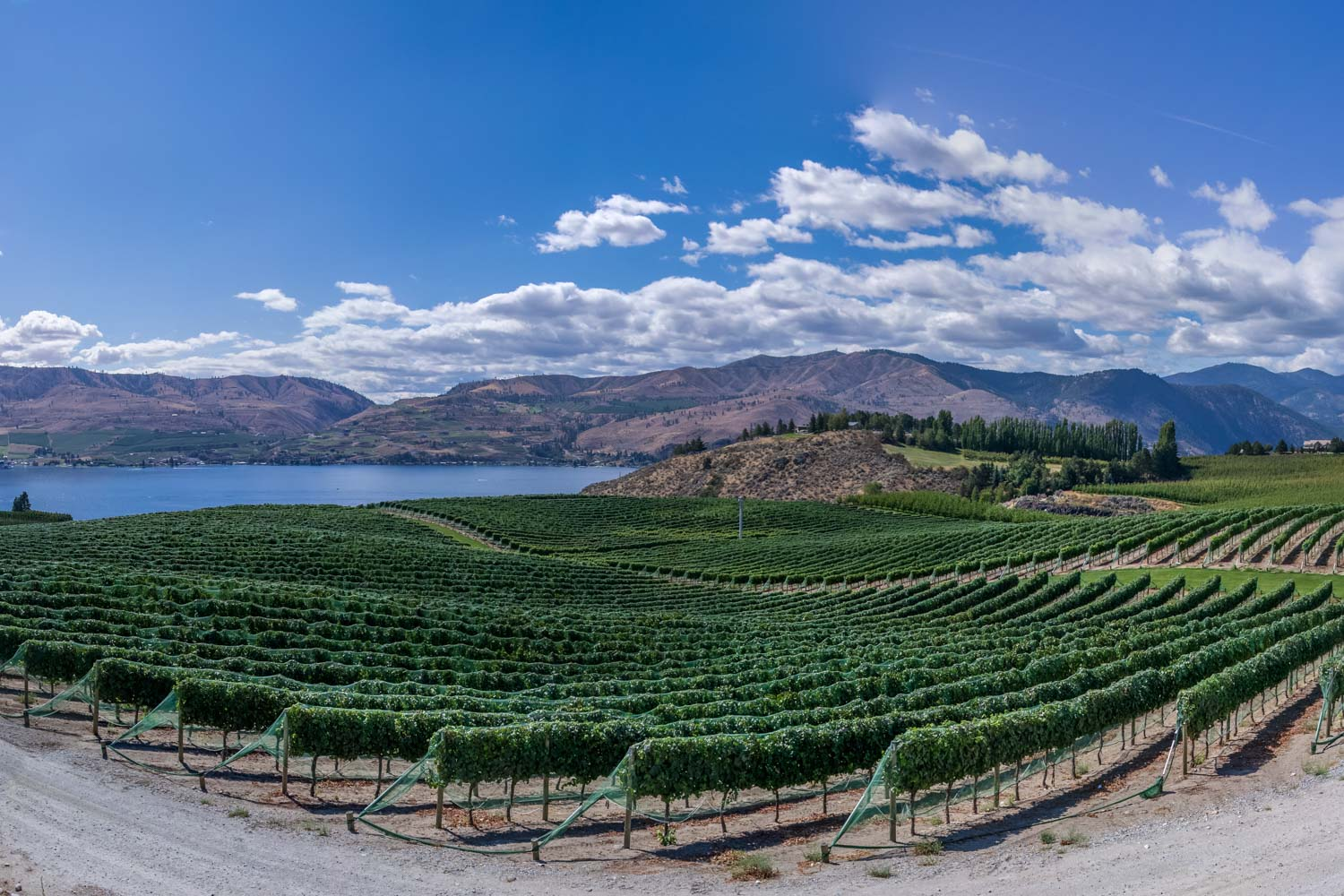 Winery beside lake and mountains.