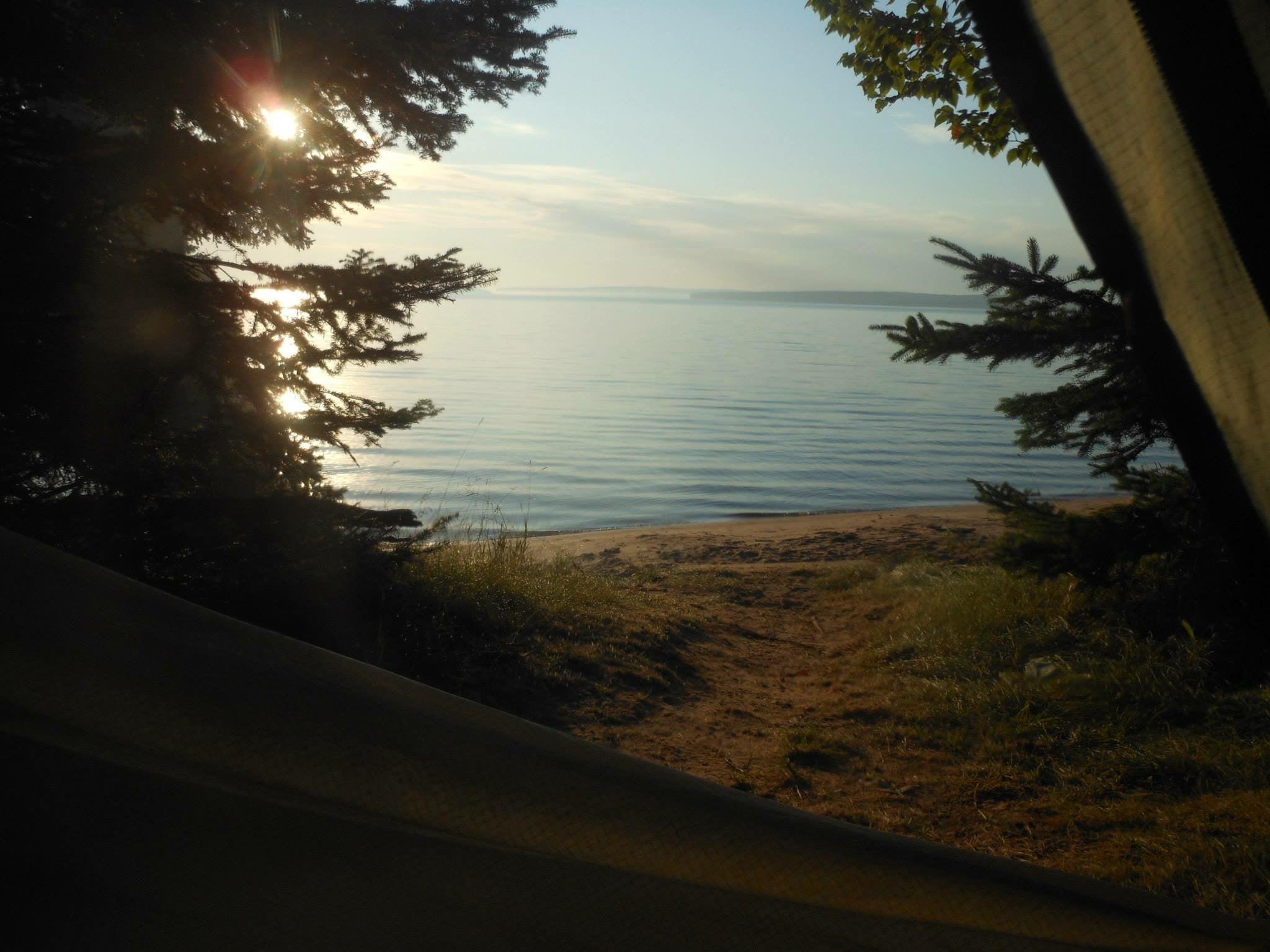 sun peeks through lakeside trees in wisconsin