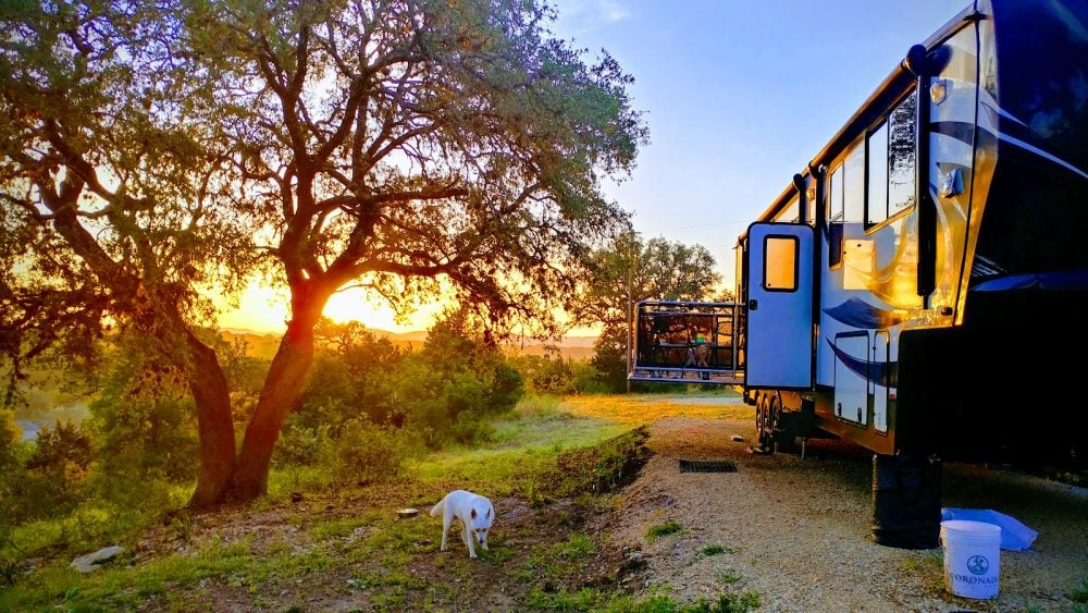 A dog sniffs around campground at Boulderdash Cabin and RV Park with a sunset in the background