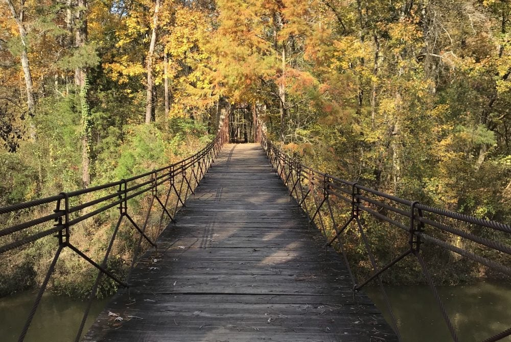 Bridge leading to fall foliage in Mississippi