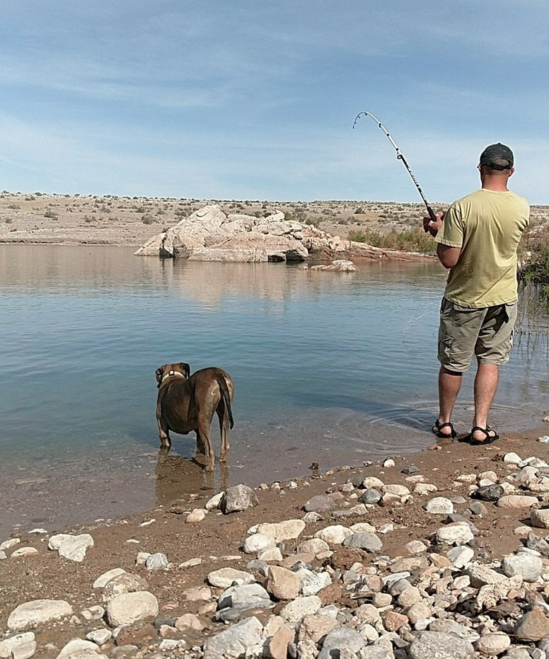 a fisherman and dog in crawdad cove, featuring boon docking dispersed camping at lake mead nevada