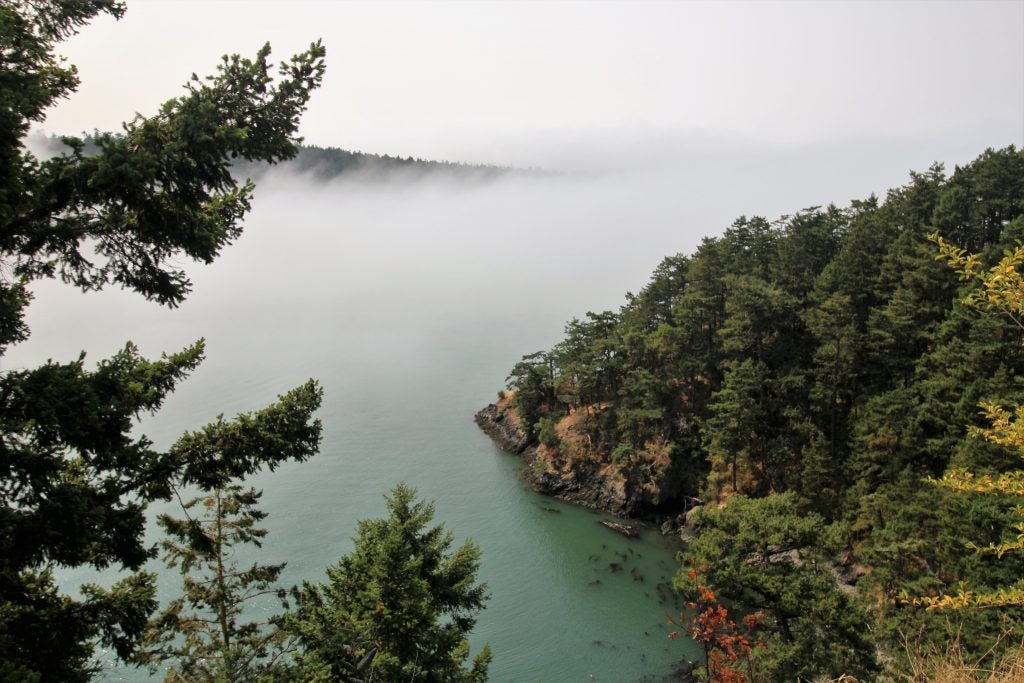 Foggy islands in the San Juans