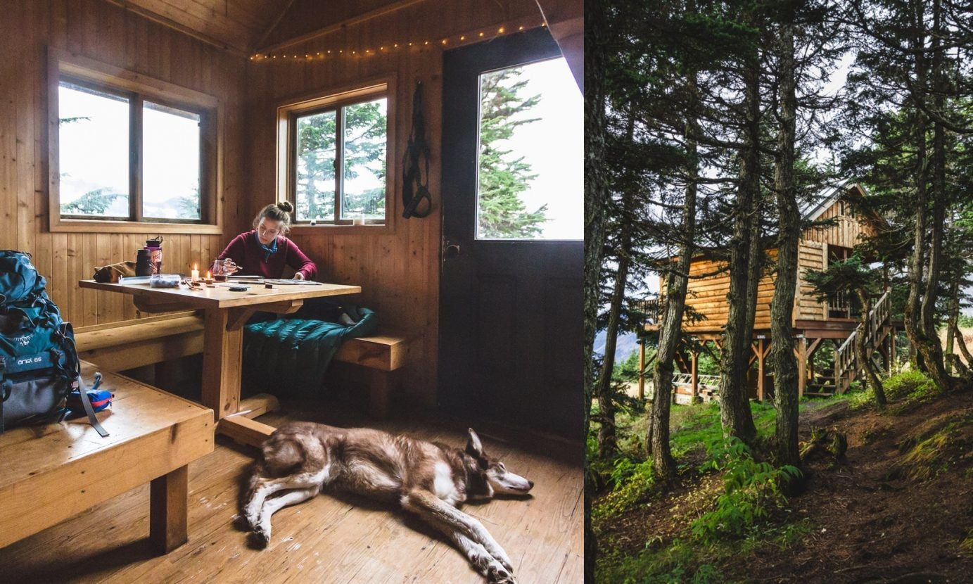 indoor view of cabin with woman and dog inside beside wooded external view