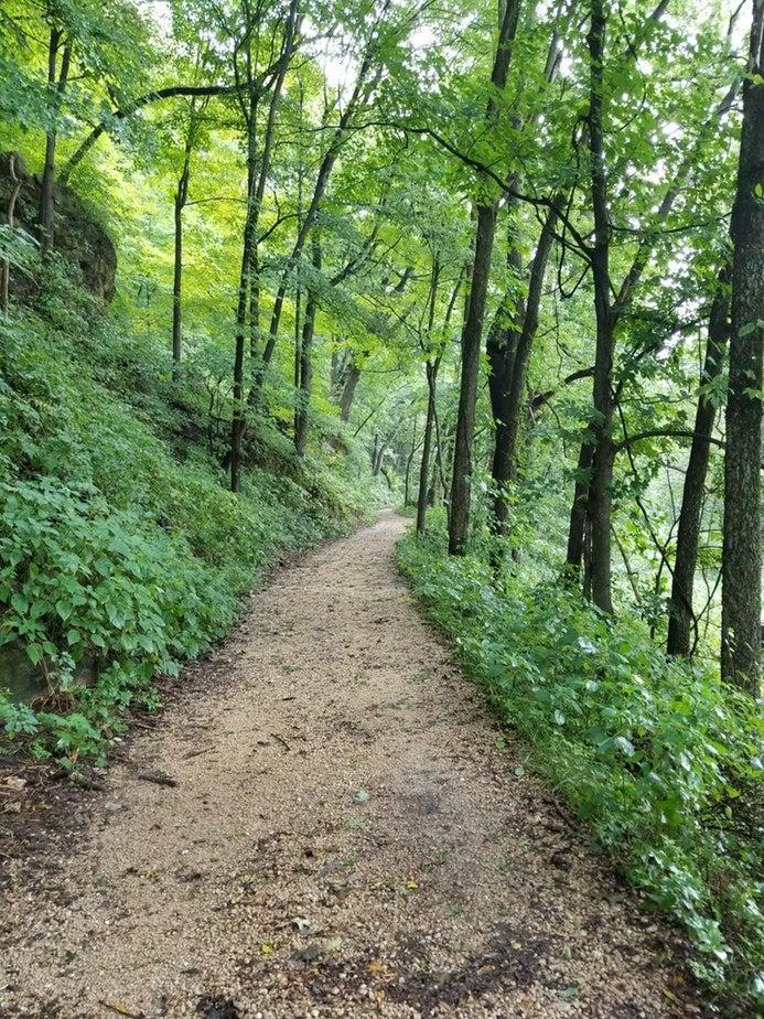 walking trail winds through wooded eden valley refuge in iowa