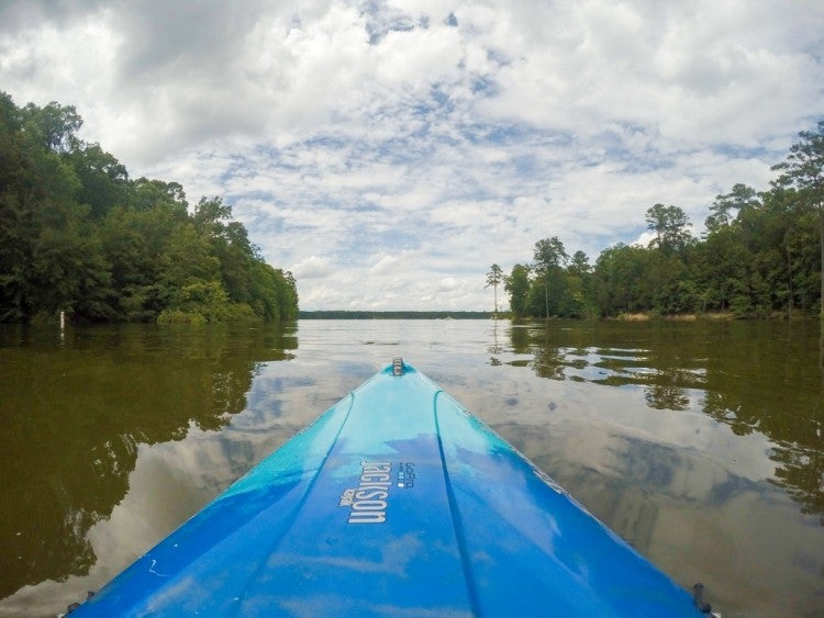 view from inside a blue kayak on the dark waters of Jordan Lake