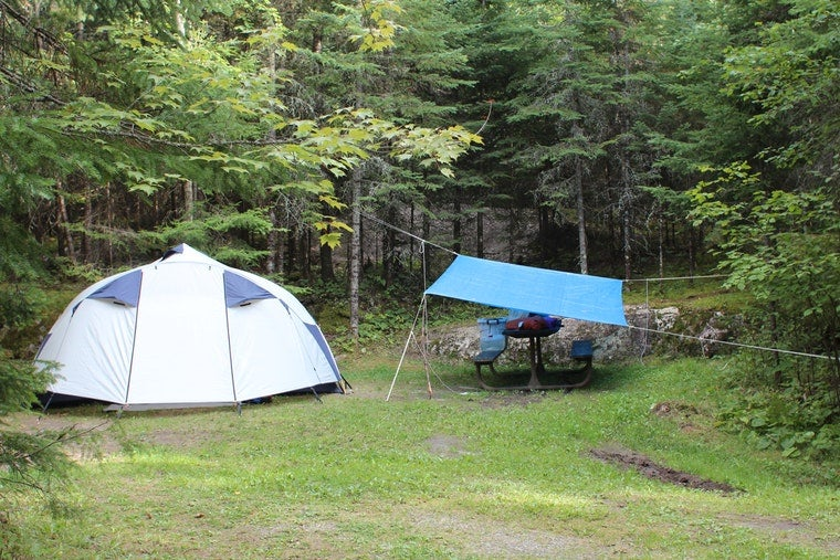 Tent and picnic table below park at forested campsite.