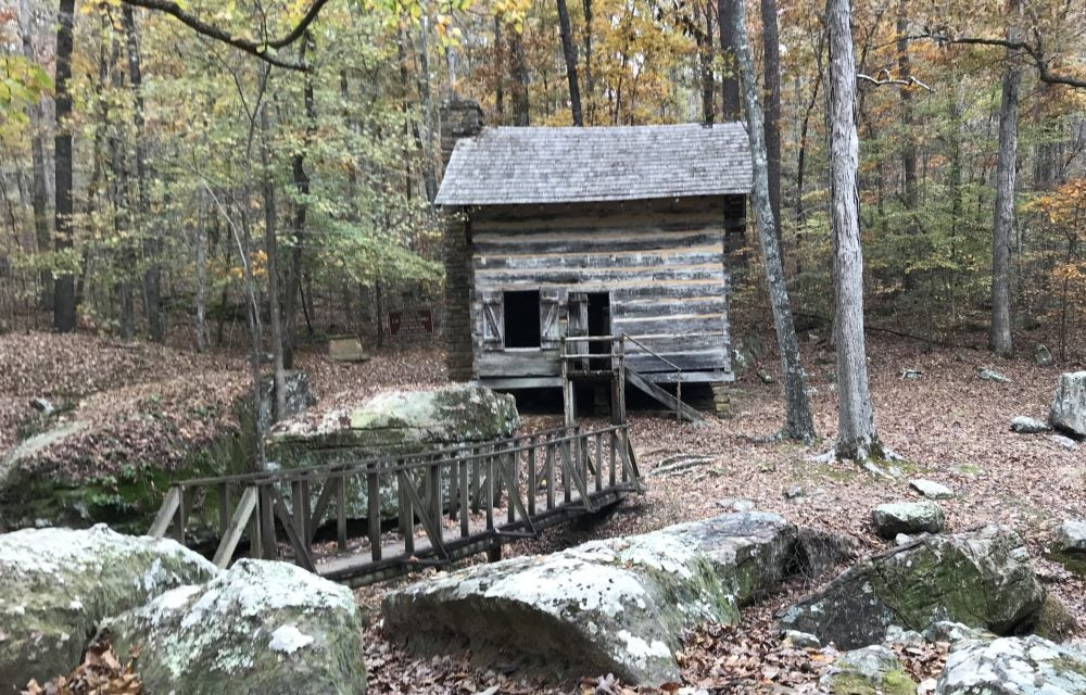 Old cabin in forest