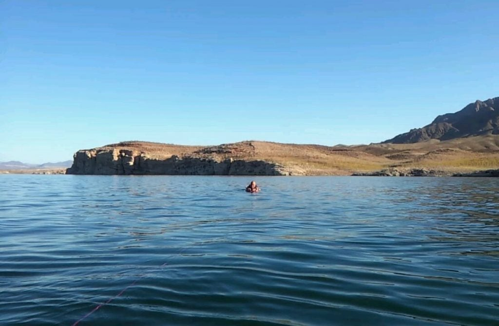 a swimmer floats in callville bay at lake mead in nevada