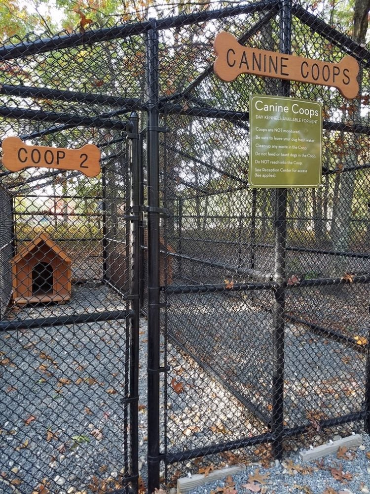 normandy farms canine coops