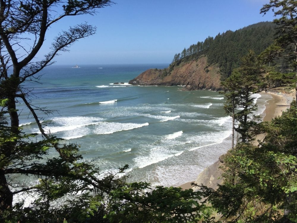 looking through forested headlands towards waves on beach at Tillamook Head National Recreation Trail