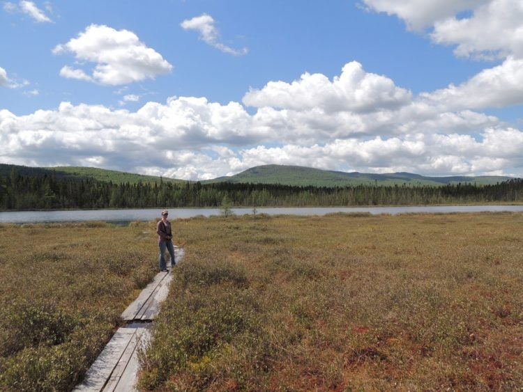 white clouds loom over marsh while a woman stands on a wooden walkway in the foreground
