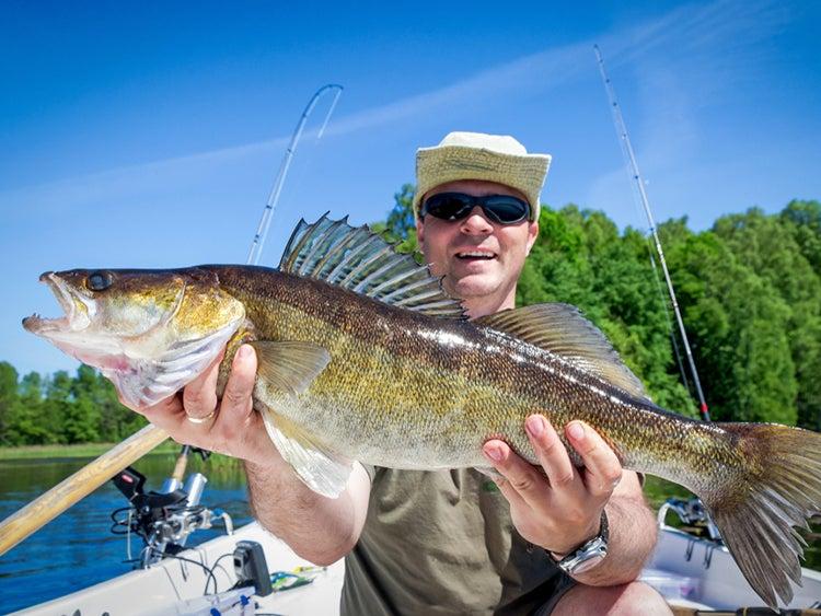 walleye fishing north dakota lake sakakawea