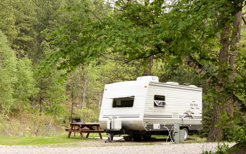 vintage trailer resides at empty, wooded campsite with picnic table visible