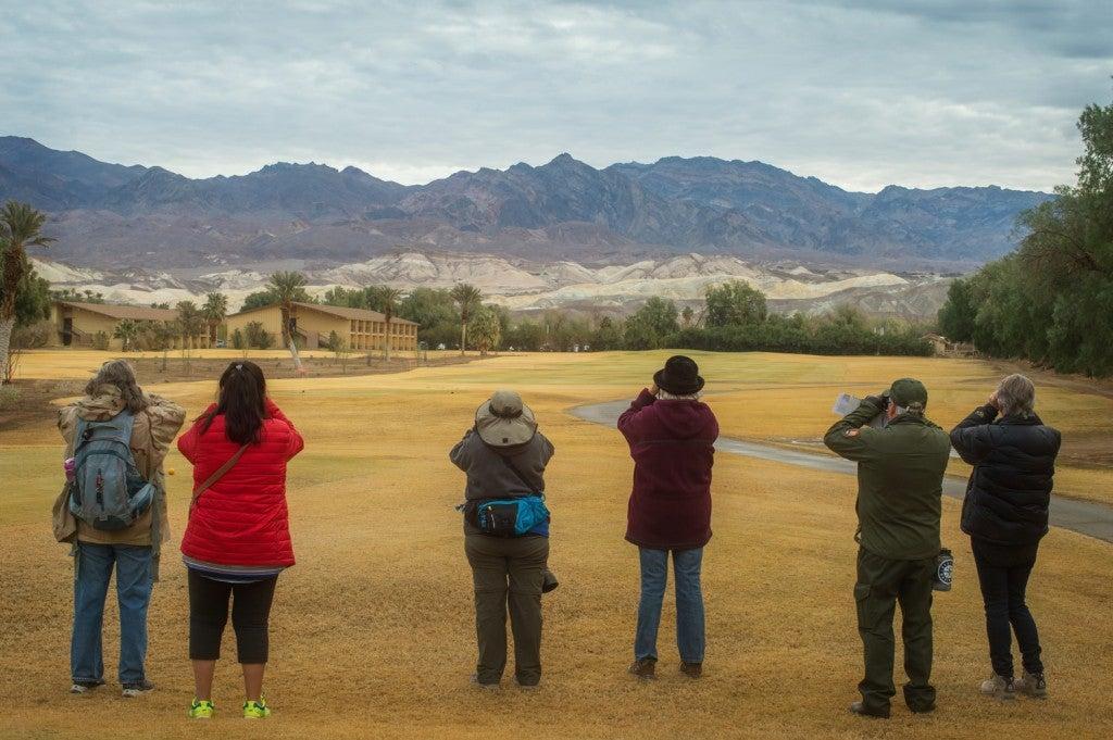 Volunteers looking for birds through binoculars during the Christmas Bird Count