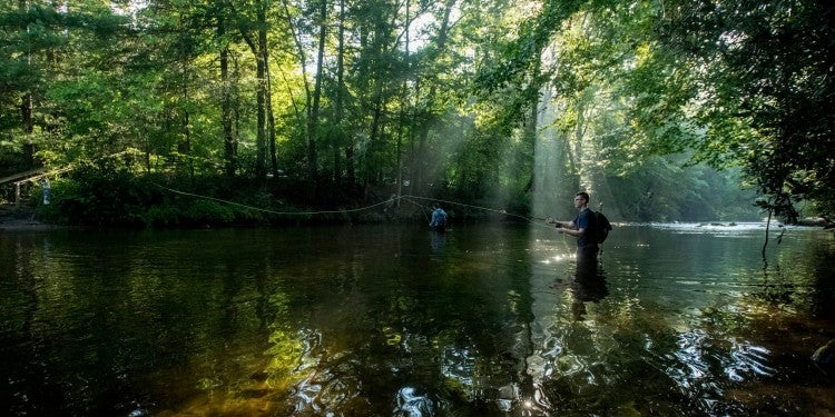 a fisherman at the davidson river campground casts his rod