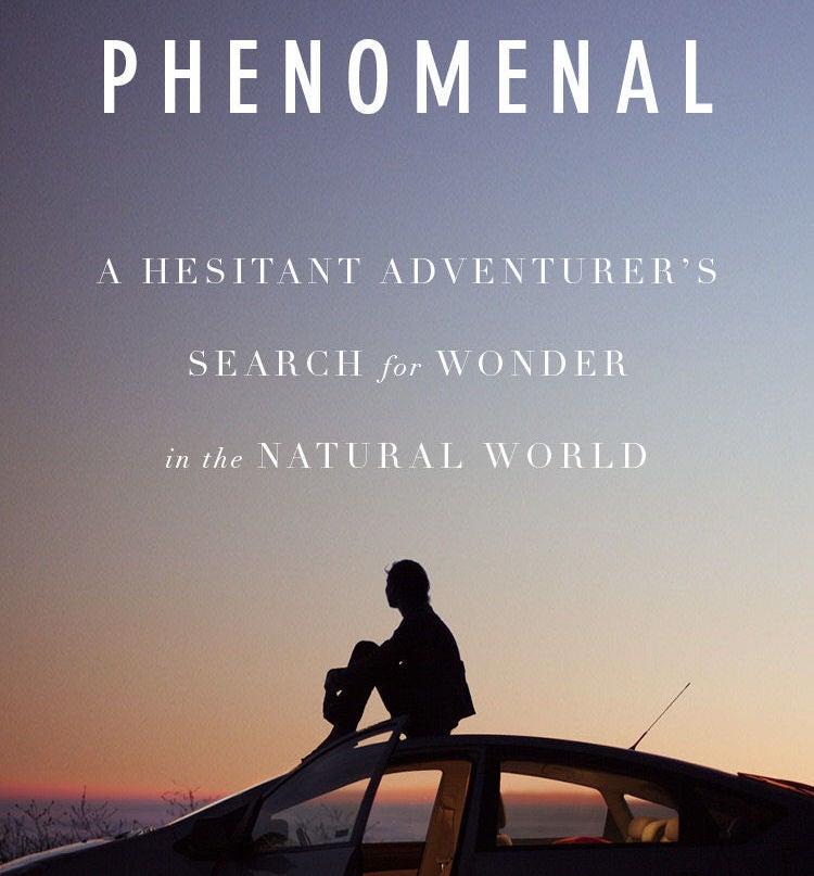 phenomenal book cover featuring silhouette of person atop car at sunset