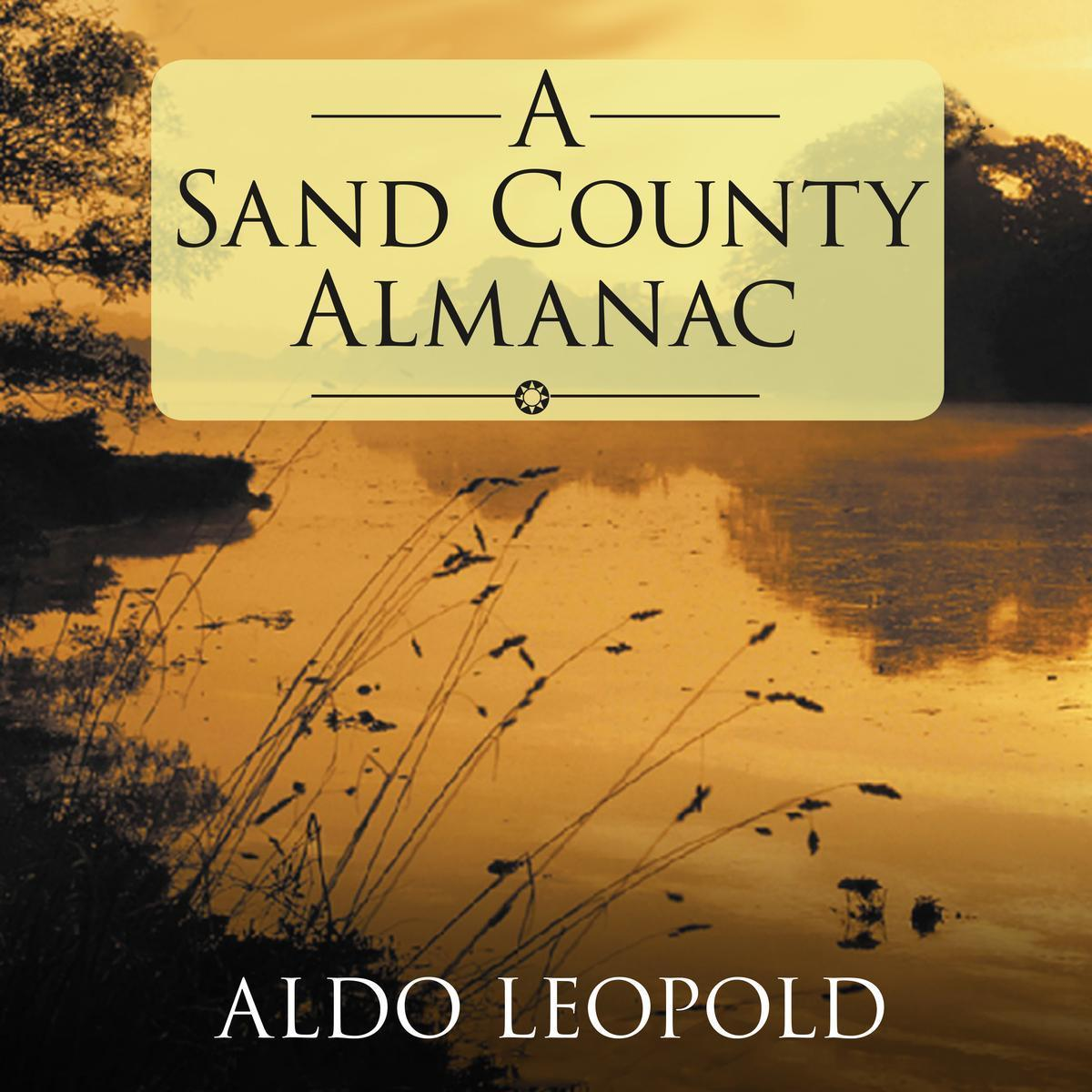 a sand almanac book cover featuring reeds at lake during sunset