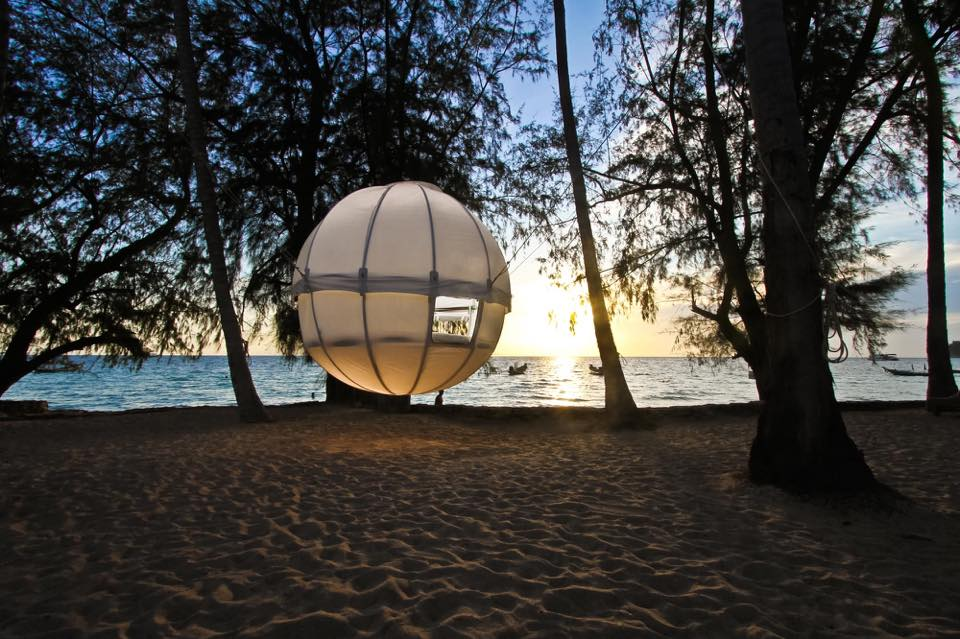 spherical suspended tent hangs from trees on a beach at sunset