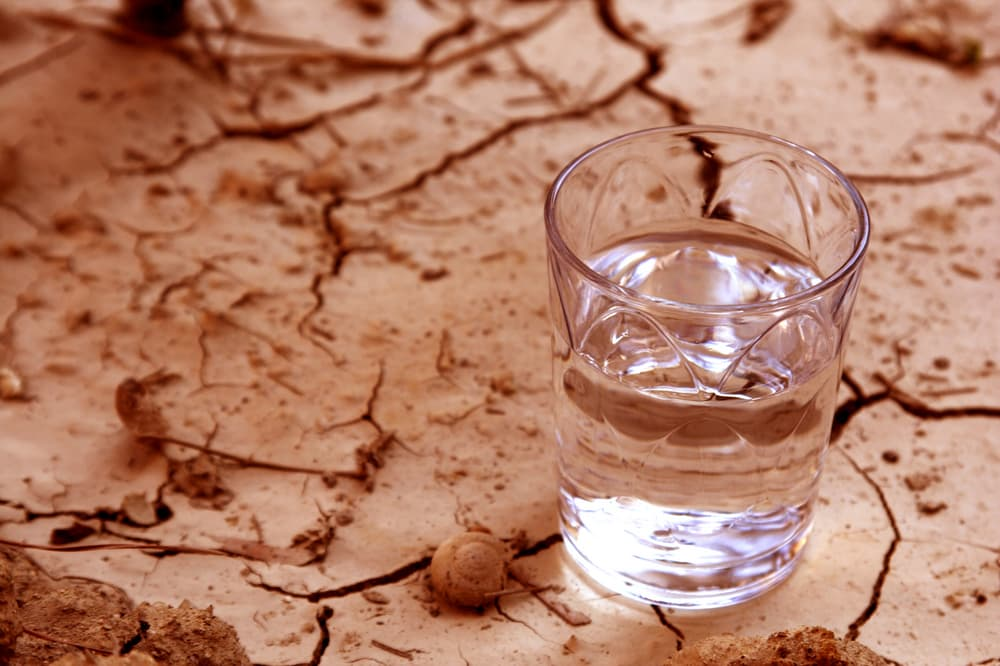 half full glass of water resting on cracked earth