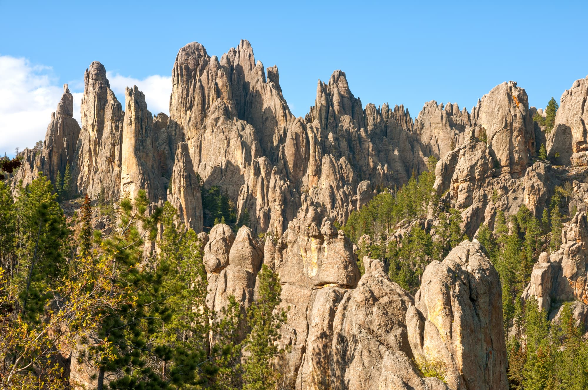 rock formations from the Black hills