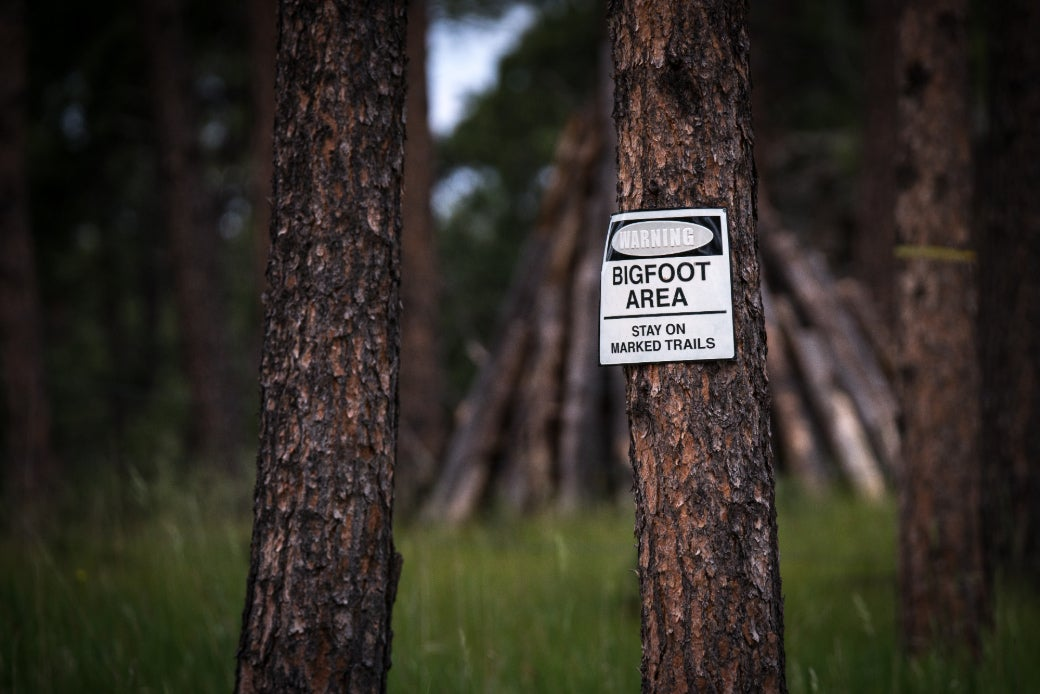 a bigfoot warning sign in the woods
