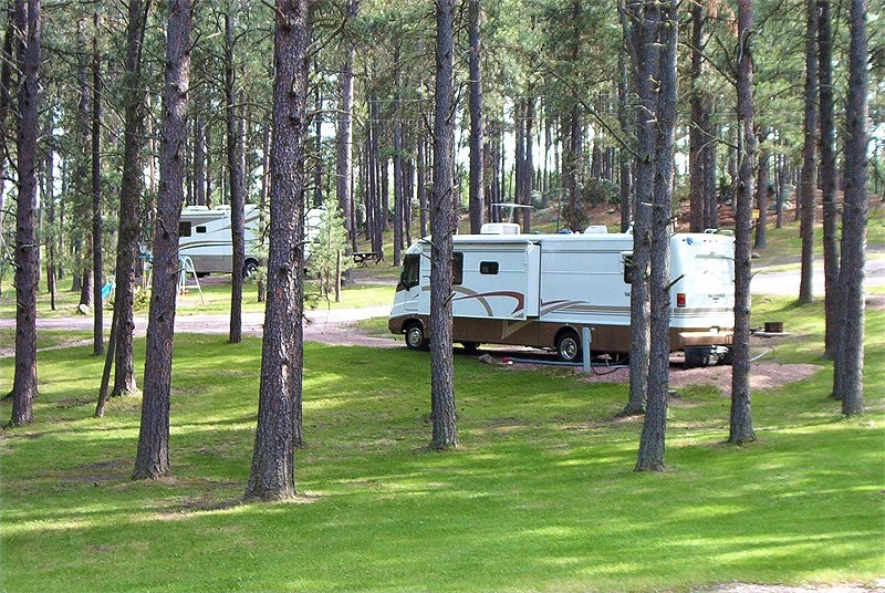 2 rvs parked among pine trees at campsites near mount rushmore