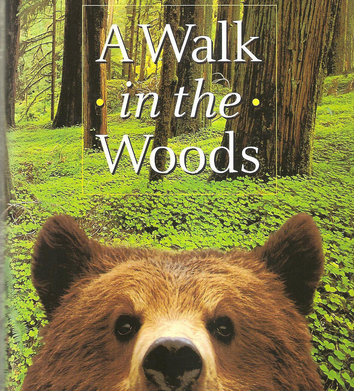 a walk in the woods novel cover featuring a brown bear