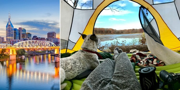 Illuminated bridge in Nashville beside image of dog and camper inside yellow tent