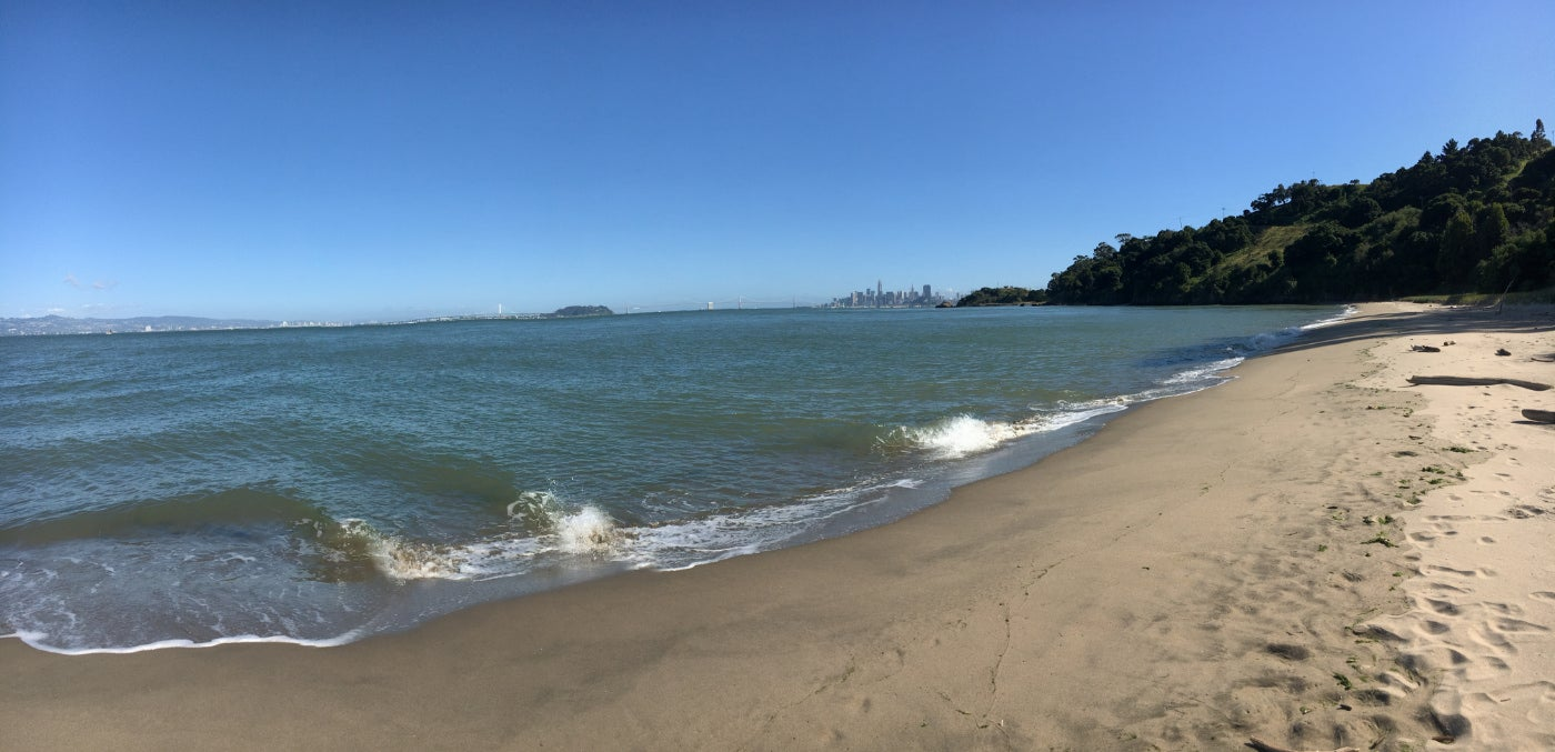 California beach with a distant view of downtown San Francisco and the Golden Gate Bridge in the background