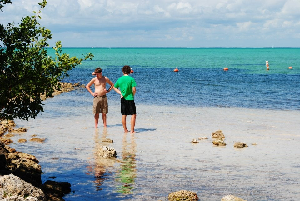 two men wading in clear ocean waters with rocks and trees visible in the foreground