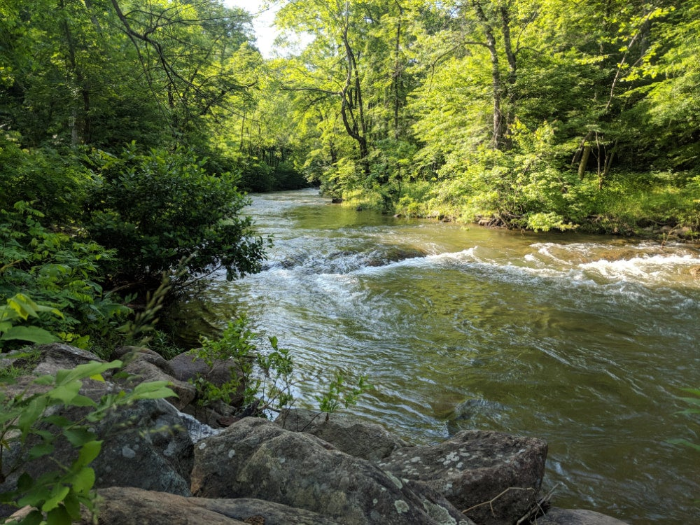 Wide angle shot of river flowing through summer foliage in the shenandoah valley